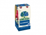 Somersby Elderflower Lime (Einweg)